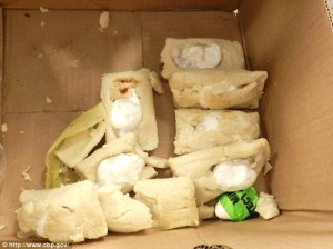 Houston Customs captured man smuggling cocaine filled Tamales