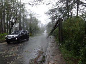 Aftermath of the Typhoon in Camp John Hay, Bagiuo